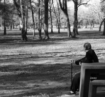 old man in the park. by jcphotos