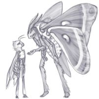 Sketch of a Bee with a Moth by DimeSpin