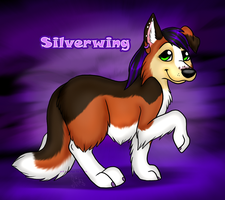 Silverwing! by PlushiePaws