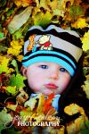 Gregory in the Leaves by filemanager