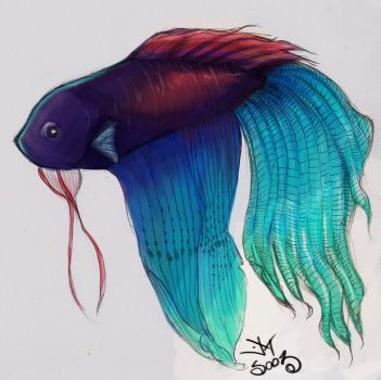 betta by soozlillend