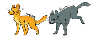 wow. warrior cats by Altiasdog