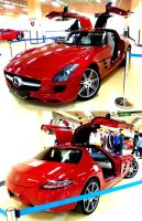 Red Gullwing of Dreams by toyonda