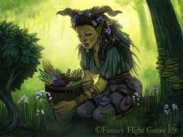 Herbalist for Talisman by feliciacano