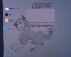 Brook- contest character sheet by KK-koolness