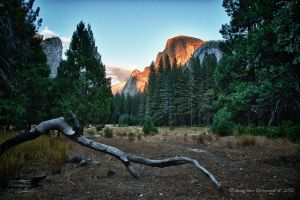 Autumn Lights in Yosemite  16 by Mac-Wiz