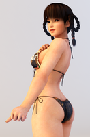 Lei Fang 3DS Render 9 by x2gon