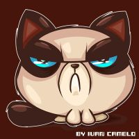 Grumpy Cat!!! by vancamelot