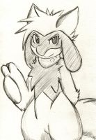 Hope The Riolu by Zander-The-Artist
