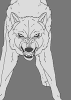 Wolf Growl 4 by WhiteWolfCrisis13