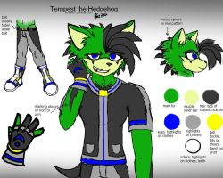 Tempest Anthro ref by scrble567