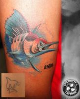Cover up of shark by ketology