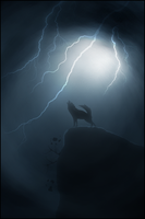 Howling at the Moon by Zuru