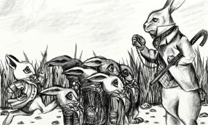 Bunnies must not be late by hankered-waistline