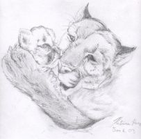 Mother cougar and cub by kat-angel