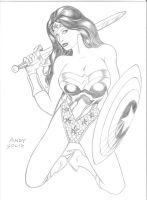 Wonder Woman and The Shield by artistandy1