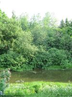 Green Riverbank I by Telepfenion