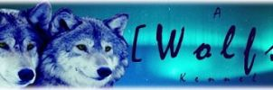 Main Banner For SDN by Wolfs-Hybrid