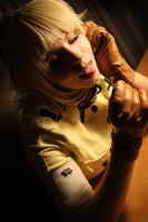 Hellsing: Damned by icequeenserenity