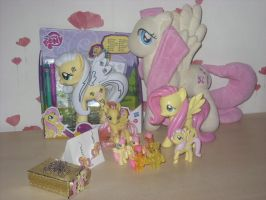 My Fluttershy collection by rosiethepinkangel