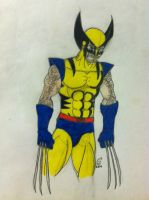 wolverine by thefirelord220