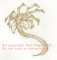Facehugger sketch by fallout161
