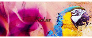 Color by QiaoFather