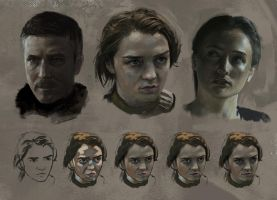 Game of Thrones Studies by jordangrimmer