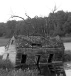 This Old House by Spoolaroo