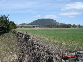 Healesville  _ Beautiful in Country  with rolling by Ven3215