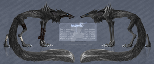Argento ref.sheet by Shanol