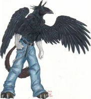 anthro raven griffin by nevarraven