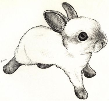 FLUFFY_BABY_BUNNY by nef