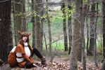 Eevee Pokemon by Mad-Cosplay