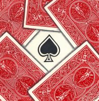 Ace Of Spades by vimster