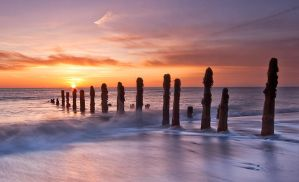 Simply Spurn by faceonimages