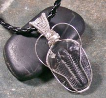 Wire-Wrapped Trilobite Pendant by HeatherJordanJewelry