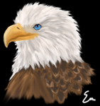 Eagle Full Size-79279 by Cocosmos