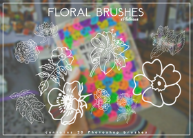 Floral Brushes | xPlateaux by xPlateaux