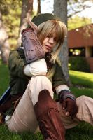 Legend of Zelda - Link 01 by shutter-crazy