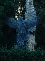 Fear The Weeping Angels! I by SonnEngel