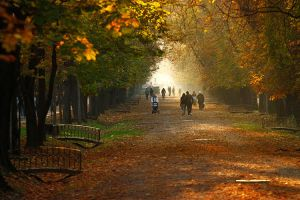 Cluj in the autumn light II by adypetrisor