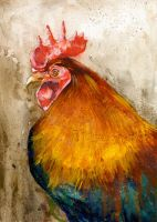 Rooster by RobHough