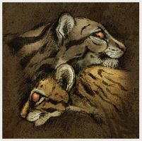 Ocelot and Clouded Leopard by Skia