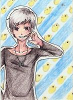 ACEO - Prussia got the chicks by Jellymii