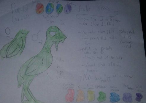 Papolat species refrence sheet by CazztheCreature