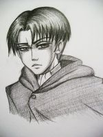 Quickie Levi/Rivaille Sketch by Hoshino-Libra