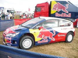 Red Bull Rally by Aura3107