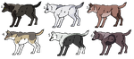 Point Adoptables 07 by WolfPawdoptables