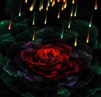 Fire and rose. by Kondratij